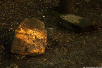 Cmentarz Żydowski w Równem